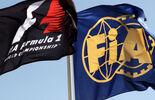 Formel 1  FIA-Flagge - GP Abu Dhabi - 10. November 2011