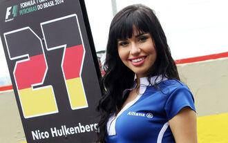 Die Zahlen der F1-Saison 2014