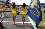 Grid Girls - GP England 2015