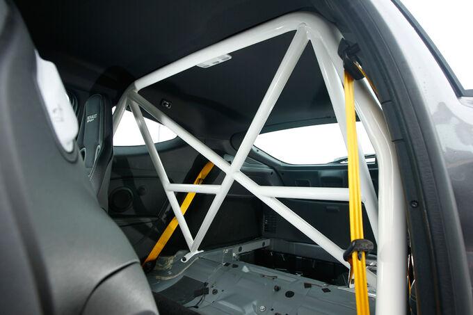 Renault-M-gane-R-S-Clubsport-Kaefig-fotoshowImage-607318b-448618.jpg